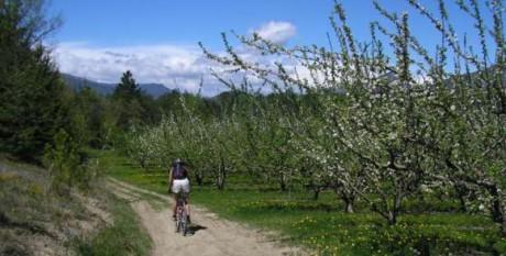 randonnée pédestre ou vtt au camping des rosieres